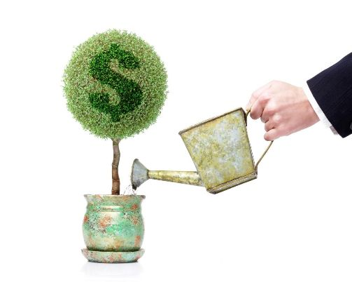 поливайте инвестиционное дерево