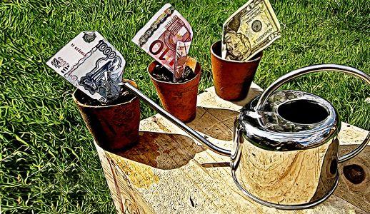 рубли доллары и евро в стаканчиках для выращивания